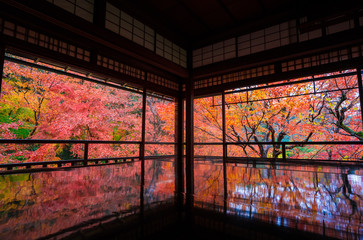 Autumn landscape seen from Ryokan Hotel, Kyoto, Japan