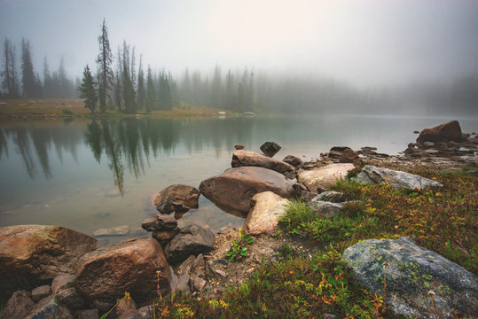 Foggy Day in the Backcountry of Wyoming