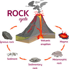 The Rock Cycle Vector İllustration