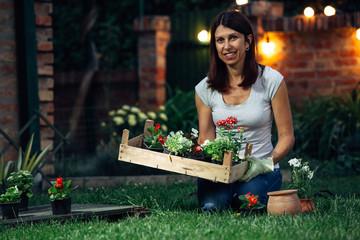 senior woman holding crate full of seedlings in her garden. evening scene