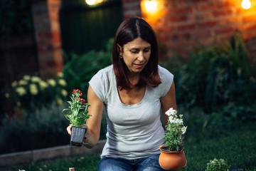evening scene of senior woman transplanting seedlings