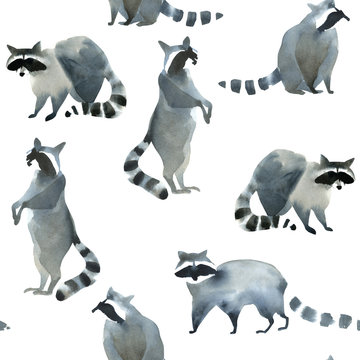 Watercolor realistic forest animal sketch. Seamles pattern about many of raccoons