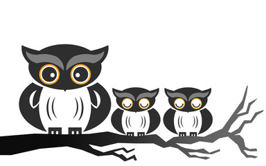 Owls on the tree branch