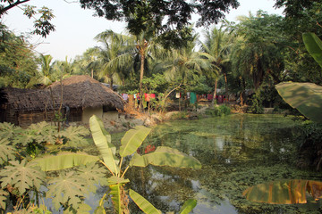 Bengali village Baidyapur, India.