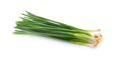 Fresh onion isolated on white background Wall mural