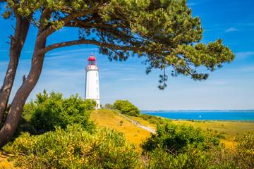 Fototapete - Lighthouse Dornbusch on the island Hiddensee, Rügen, Ostsee, Germany