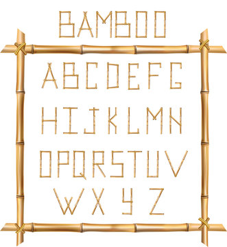 Vector bamboo alphabet isolated on white background.