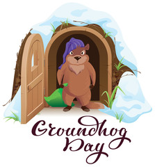 Groundhog day. An angry woodchuck left house and open door
