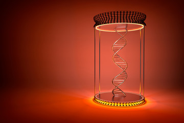 DNA double helix in show-case with orange stand, dark color background