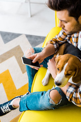 handsome man using smartphone while sitting on sofa with dog