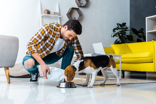 handsome man feeding cute dog in living room at home