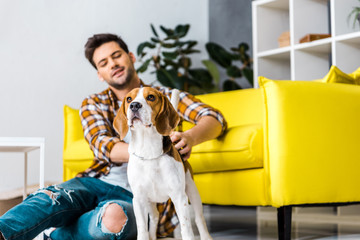 casual man with beagle dog sitting on floor near sofa at home
