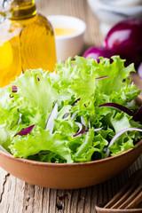 Fresh green leaf vegetable salad,  plant-based healthy meal