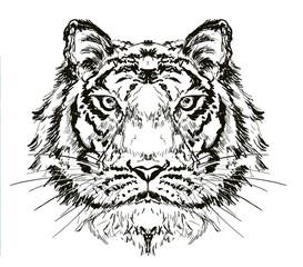 tiger head hand drawn illustration,art wall inspiration