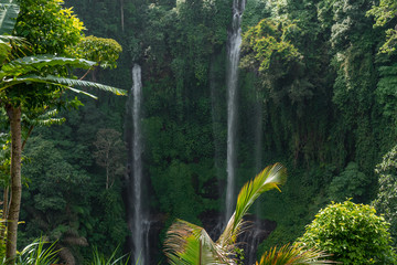 Sekumpul waterfall in the green rainforest of Bali island, Indonesia.
