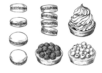 Set of delicious hand drawn creamy biscuit, french macaroons and tarts with berries. Engraving style pen pencil painting retro vintage vector lineart illustration. Collection of sweet desserts.