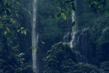 Sekumpul waterfall in the green rainforest of Bali island, Indonesia.