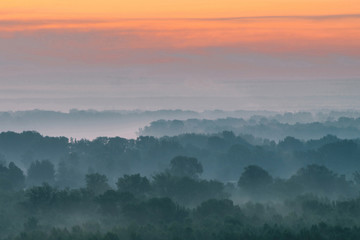 Mystical view from top on forest under haze at early morning. Mist among layers from tree silhouettes in taiga under warm predawn sky. Morning atmospheric minimalistic landscape of majestic nature.