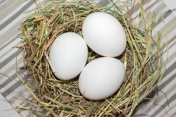 Easter white chicken eggs in straw nest, rustic style striped cloth below