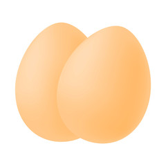 Realistic image of two eggs. Isolated vector illustration on white background