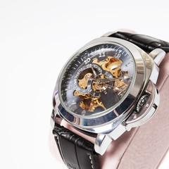 luxury fashion watch isolated