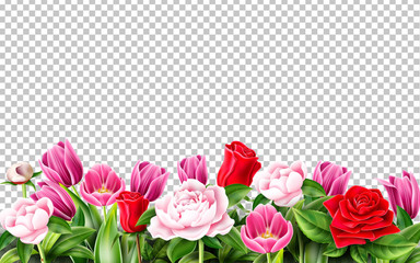 Vector tulip rose peony flower on transparent