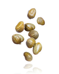 Capers frozen in air close up, isolated on white background