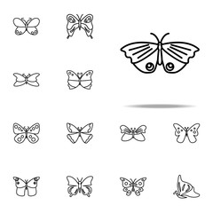 butterfly icon. butterfly icons universal set for web and mobile