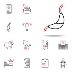 Gastroenterology colored line icon. Medical icons universal set for web and mobile