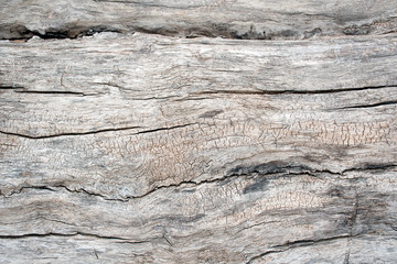Close up of rustic gray and brown weathered wood
