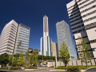 Fotomurales - さいたま赤十字病院と新都心のビル街