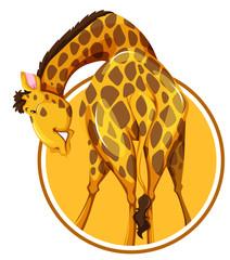 A giraffe on sticker template
