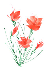 Watercolor painting. A bouquet of flowers of red poppies, wildflowers on a white isolated background. Hand drawn watercolor floral illustration, logo. Abstract splash of watercolor paint