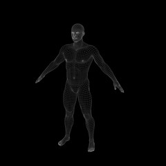 Standing man. Wireframe human body. Isolated on black background