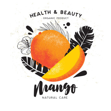 Vector illustration of mango. Templates of design of labels and packaging. Whole fruit and pieces.