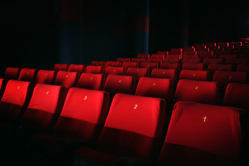 Empty cinema with comfortable chairs