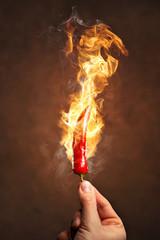 Scharfe Chilischote umgeben von Feuer und Flammen
