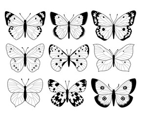 Set of illustrations with butterflies. Freehand drawing. Can be used for scrapbook, banner, print, etc.