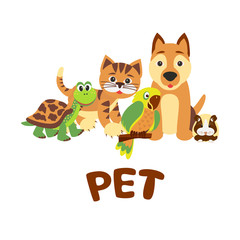 Home pets sitting in line: cat, dog, hamster, parrot and turtle. Vector cartoon illustration.