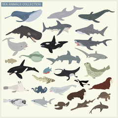 Set of sea animals on a light background