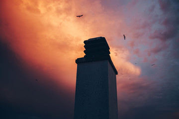 High tower and birds flying in pink sky