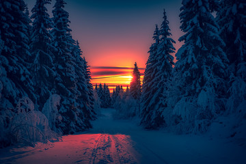 Winter sunset road view from Sotkamo, Finland.