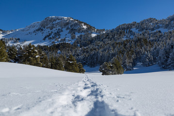 A trail in the snow in the  mountains of Les Vercors, France.