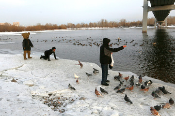"""An artist Slonov is brought into the chain by a man in fancy dress during the art performance as part of artist's exhibition """"The Cotton Bears Dreams"""" on a bank of the Yenisei river in Krasnoyarsk"""