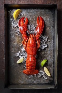 Lobster in a dark grey rusty tray served on ice with lemon and live, top view, vintage style