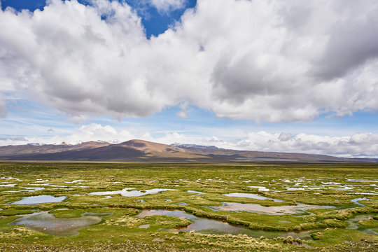 Peru, Chivay, Colca Canyon, swamp landscape in the Andes