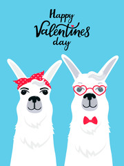 Couple in love llamas. Greeting card for Valentine's Day. Funny alpacas