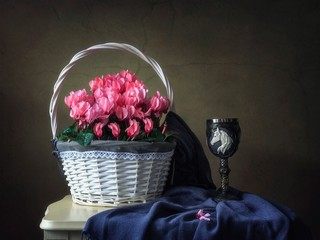 Still life with basket of pink cyclamens