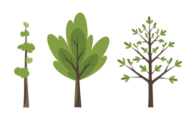 Decorative trees icon set. Flat trees in a flat design. Isolated on white. Vector icons.