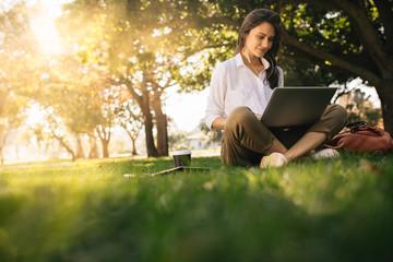 Fototapeta Woman sitting on grass at park working on laptop obraz